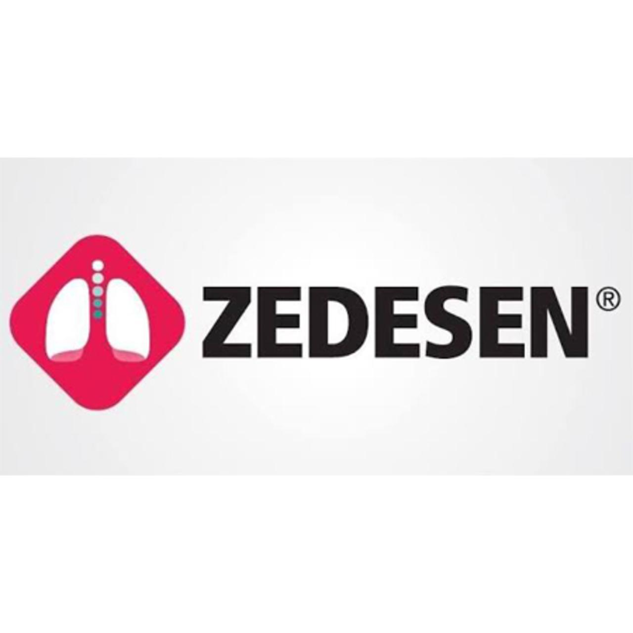 Zedesen